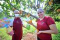 Páscoa: oportunidade de faturamento para microempreendedores