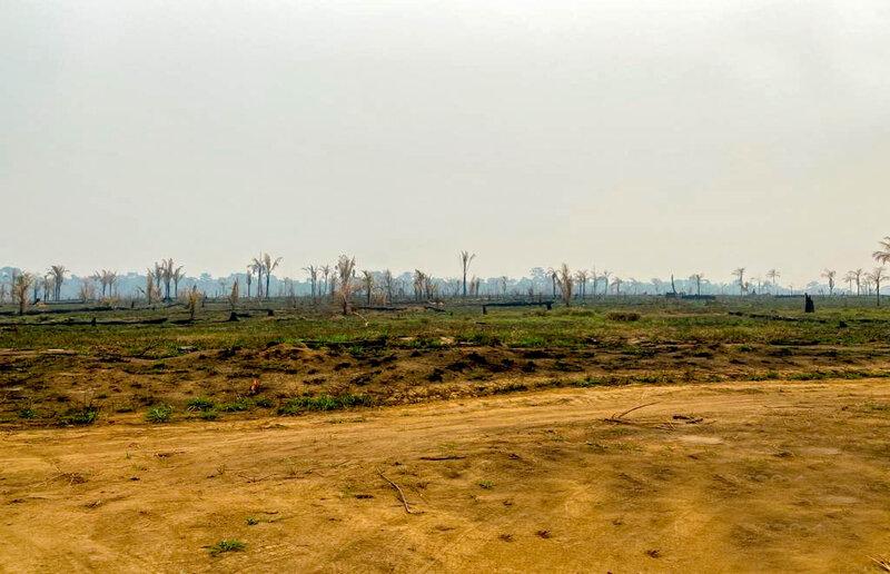 Álvaro Dias sugere curso para tomadores de empréstimos aprenderem mais sobre conservação ambiental