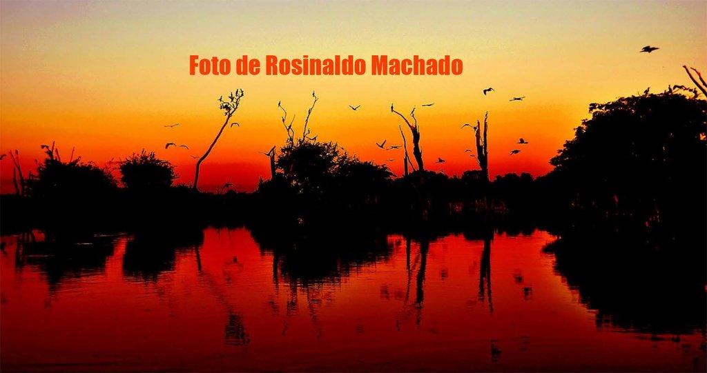 FINAL DE TARDE NO VALE DO GUAPORÉ - Por Rosinaldo Machado - Gente de Opinião