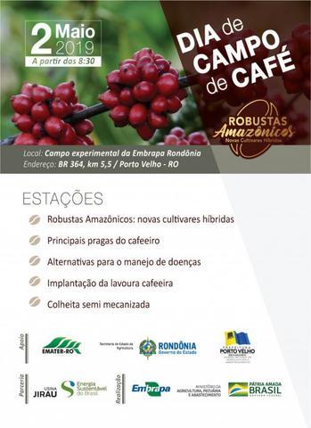 Embrapa apresenta novas cultivares híbridas de café em dia de campo em Porto Velho - Gente de Opinião