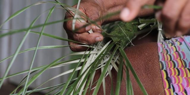 Tipiti, tecnologia indígena de uso secular na Amazônia, conheça este artefato - Gente de Opinião