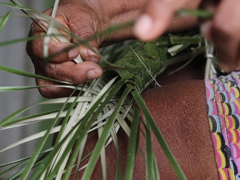 Tipiti, tecnologia indígena de uso secular na Amazônia, conheça este artefato