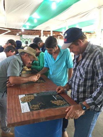 Cafeicultores de Rondônia são capacitados em Classificação Física e Análise Sensorial do Café - Gente de Opinião
