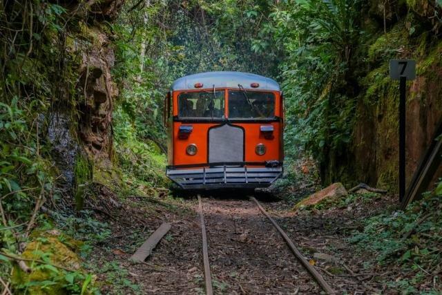 Recentemente reativada, a Litorina retomou os passeios pela antiga Estrada de Ferro - Gente de Opinião