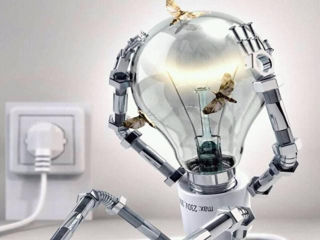 Energia Elétrica - Gatos: consumidor legal paga conta dupla - Gente de Opinião