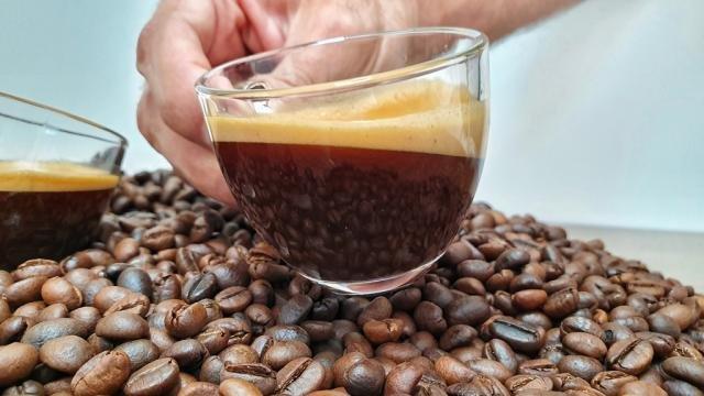 O café reflete na xícara todo o trabalho em campo - Gente de Opinião