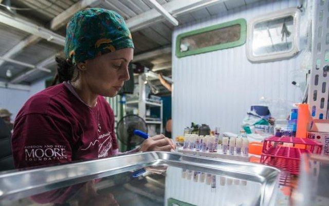 Pesquisadores realizam coletas para identificação de fauna (Foto Leonardo Lopes) - Gente de Opinião