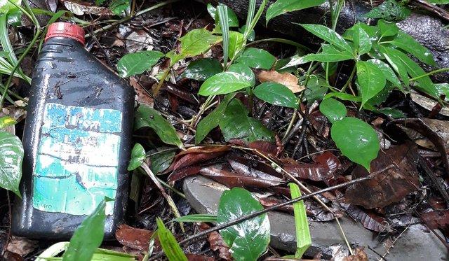 Pesquisadores ainda devem analisar presença de microplástico no solo (Foto Elias Neto) - Gente de Opinião