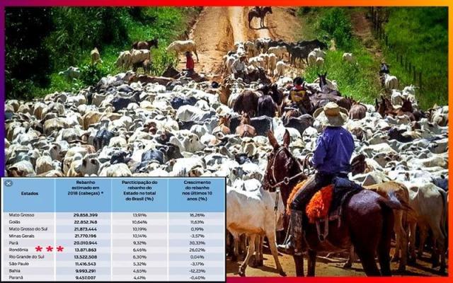 Nossa carne vai dar um salto no mercado mundial + Montes e a CPI da Energisa + Ribeirinhos: ameaçados e assustados - Gente de Opinião