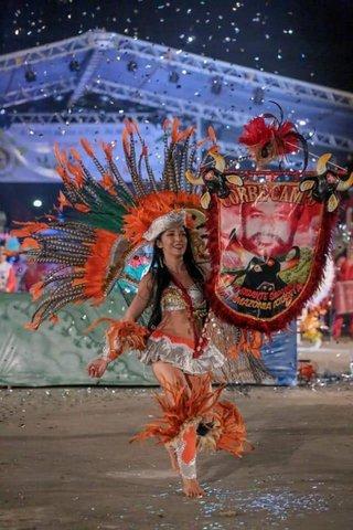 Lenha na Fogueira o Arraial Flor do Maracujá 2020 - Gente de Opinião