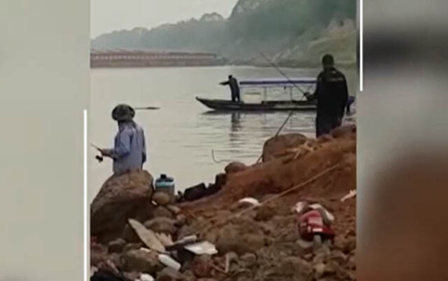 Pescadores matam jacaré no rio Madeira e estão sendo procurados pela polícia - Gente de Opinião