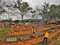 Churrasco de tambaqui em 10 cidades de Rondônia