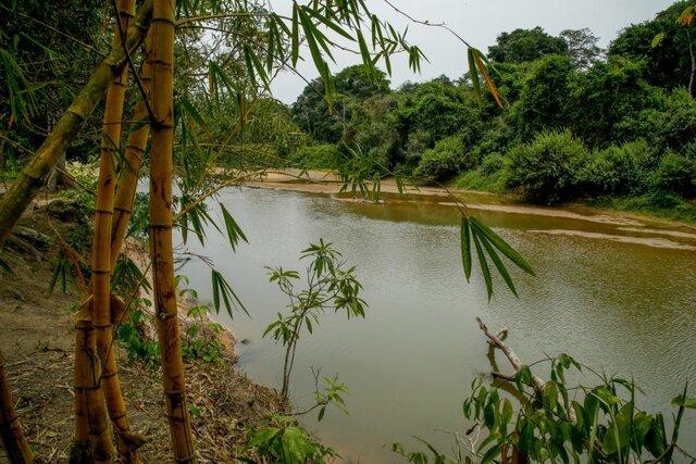 Rio Cautário banha a reserva,cuja temperatura oscila entre 23ºC e 29ºC - Gente de Opinião