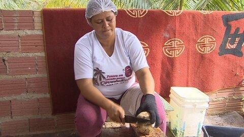 Consultoria do Sebrae ajuda agroindústria a reduzir danos ambientais e aumentar faturamento