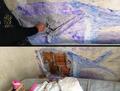 Presas camuflam escavação na parede da cela com desenho de peixe