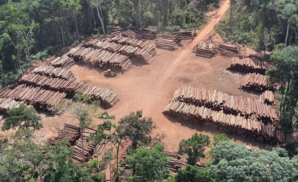 Volume  de madeira apreendida é estimado em 131 mil metros cúbicos é suficiente para a construção de 2.620 casas populares (Foto  Divulgação/Exército Brasileiro) - Gente de Opinião