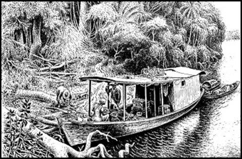 A Terceira Margem – Parte CXXXI - Foz do Breu, AC/ Manaus, AM ‒ Parte VII
