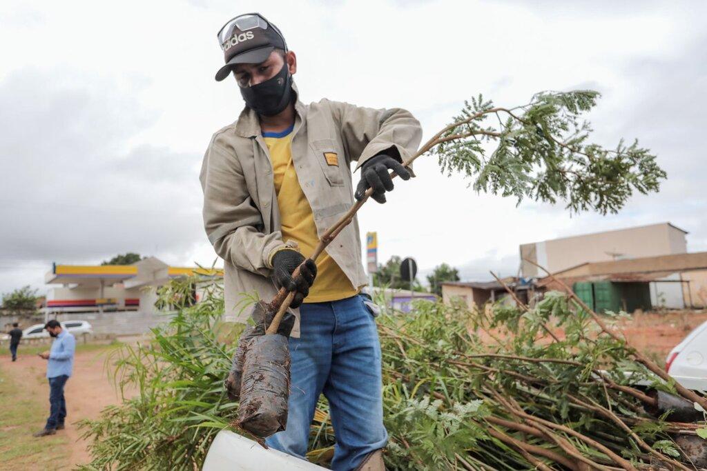 Programa APP Viva inicia plantio de mudas às margens do Igarapé da Penal em Porto Velho - Gente de Opinião
