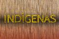 Registros de imóveis em Terra Indígena Karipuna devem ser cancelados, recomenda MPF