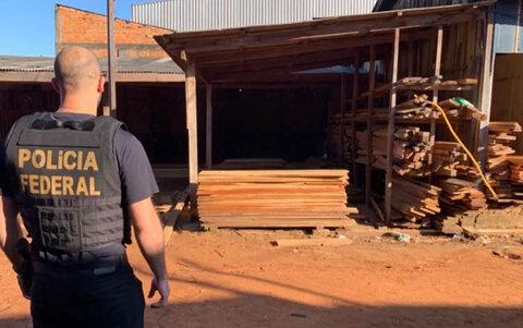 Operação investiga extração ilegal de madeira em terras indígenas de Rondônia