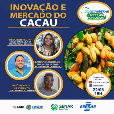 Inovação na cacauicultura em debate em live promovida pelo Sebrae