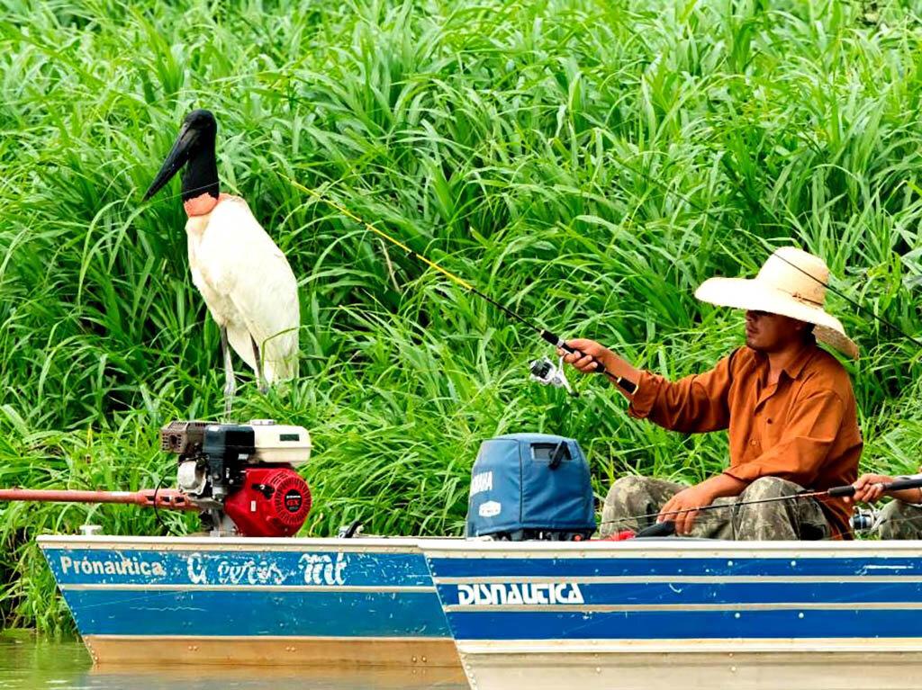 Pescaria no Pantanal (Timothy Radke) - Gente de Opinião