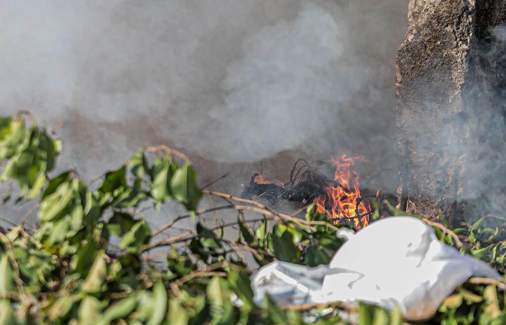 Distritos de Porto Velho terão programa de educação ambiental e atendimento social - Gente de Opinião