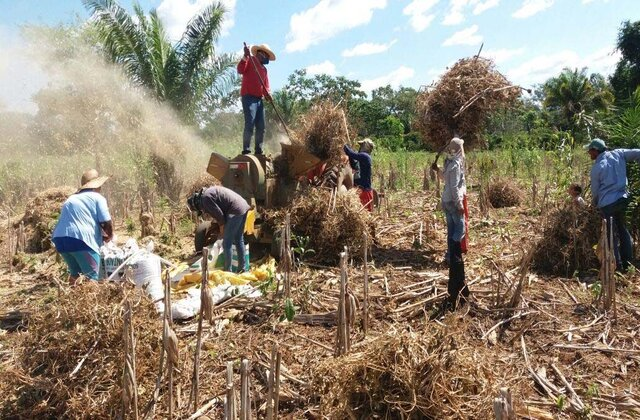 No Dia do Agricultor, Governo de Rondônia destaca a importância da agricultura para impulsionar a economia