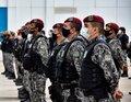 Ações integradas com reforço da Força Nacional resultam em apreensões, prisões e multas ambientais em Rondônia