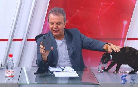 Jornal da SIC TV é invadido por uma gata que rouba a cena
