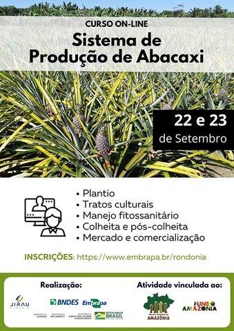 Parceria entre Jirau Energia e Embrapa/RO oferece curso para cultura do abacaxi em Rondônia - Gente de Opinião