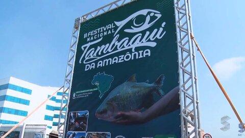 Festival Nacional do Tambaqui da Amazônia mobiliza produtores
