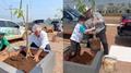 Sustennutri e Uzzipay realizam plantio de 100 mudas em alusão ao Dia da Árvore e evento celebra também 2 anos da conta digital